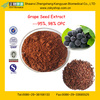 GMP Factory Supply Natural 95%,98% Grape Seed Extract with Proanthocyanidins