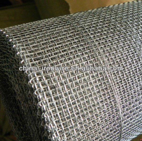 hot dipped or electric galvanized square wire mesh(Manufacturer)