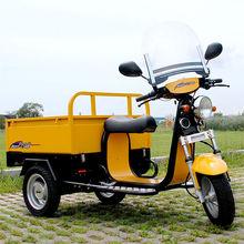 1.2kw bldc Cargo eletric 3 wheel motorcycle