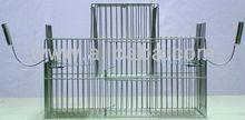 bird trap cage