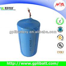 D size ER34615M Lithium battery