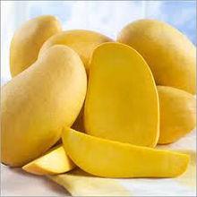 Kesar mango fruits
