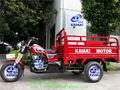 Canton fair bicicleta de carga/bicicleta com motor/3 roda da motocicleta