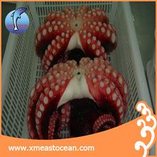 frozen octopus cooked