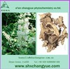 factory price nature black cohosh extract