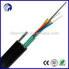 Figure 8 Optical Fiber Cable (GYTC8S)