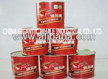 2013 tomato paste 140g