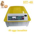 buen precio profesional de pollo incubadora de huevos fértiles de pollo de los proveedores