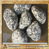 granite color landscape stone/grey stone /pebblestone/grey granite