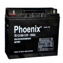 TS12180 Battery/VLRA 12V 18Ah
