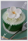 Paper Muffin Cases Cupcake Lines Paper Cake Cup