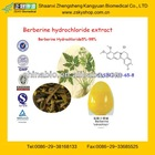 100% Natural Chinese Goldthread Rhizome Extract with Berberine Hydrochloride