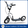 Ride on steel scooter