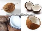 Instant fruit powder for sale coconut milk powder