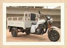 China Manufactor High Quality Three Wheel Covered Motorcycle For Sale
