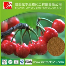 Pure high quality of 100% Naturalblack cherry extract