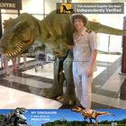 MY Dino-Dinosaur velociraptor suit dinosaur costume lightweight