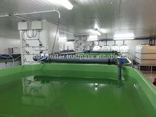 Fiberglass Aquaculture Nursery Tank