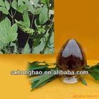 Pure Natural Plant Extract Powder Black Cohosh P.E