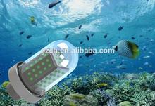 12V 24Vdc, AC 10W-600W submersible underwater green led fishing light Stick