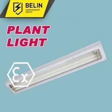 BHY natural light fluorescent tubes