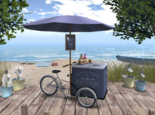 2014 new design electric bicycle with roof with freezer carry storage ice cream