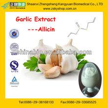 GMP Manufacturer Supply Garlic Powder Ingredients