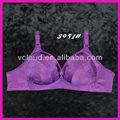 حار بيع تصميم جديد الصدرية الصدرية النساء سراويل داخلية شفافة الصور في(8051)