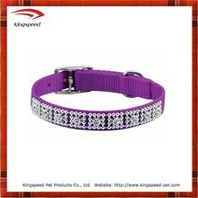 Luxury purple dog collar jewelry