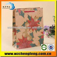 paper bag for hosipital document