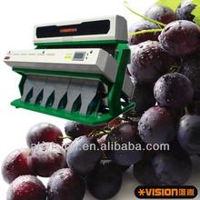 ccd raisin color sorter machine, LED lamps, nikon camera