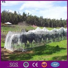 Orchard bird net/Bird prevention net/high quality anti bird net