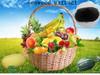 soluble seaweed fertilizer, organic fertilizer