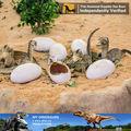Meu dino- incubação e crescente ovo de dinossauro de brinquedo