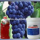 Natural edible preservatives for fruit juice