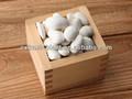 Blanco perla frijoles en polvo extracto