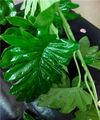 china proveedor artificial hojas de palma