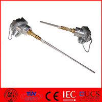 Customized Stainless Steel Thermal Couple with Copper Process Connection