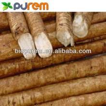 100% natural burdock root extract