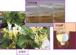 100% natural chlorogenic acids
