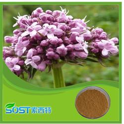 high quality with best price valeric acids