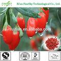 Ningxia nova safra secas goji berries, frutas wolfberry, a baga de goji