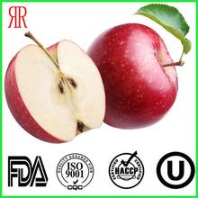 2014 hot sale fuji apple