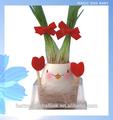 ovo mágico do bebê natural miniatura interior sementes ornamentais plantasdefolhagem
