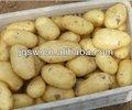 batata doce chinês marcas de batatas fritas