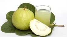 Natural White Guava Pulp