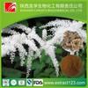Triterpene Glycosides Black Cohosh Powder Extract