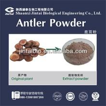 high quality ton stock deer antler velvet extract powder