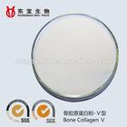 HALAL 100% bovine bone collagen powder