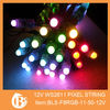 ws2811 programmable led dot pixel 12mm with waterproof IP68 DC12V input